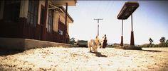 From Paola Suhonen's  Sydän Talven Yksinäiset'  #film #puppy #dogs