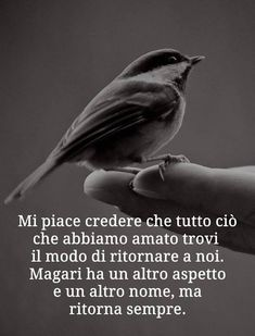 Papà frasi Some Quotes, Best Quotes, Poetry Quotes, Words Quotes, Italian Quotes, Magic Words, Interesting Quotes, Phobias, Zodiac Quotes