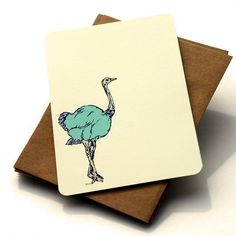 The Ostrich Notecard Set  Ostrich Notecards in by OliveandRuby, $10.50