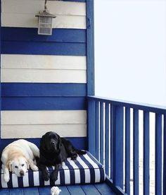 MARINHEIRO A BORDO | Se a decoração da casa de praia é no melhor estilo navy, o espaço do seu pet não pode destoar. #inspiracao #decoracao #verao #pet #ficaadica #SpenglerDecor