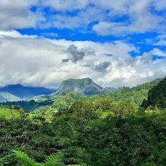 Hell Bourg 👍 😮 (Photo envoyée par @zoreil93) N'hésitez pas vous aussi à envoyer vos photos par mp. Liker la page fb : facebook.com/ile974  #lareunion #reunion #gotoreunion  #reunionisland #iledelareunion #reunionparadis #reuniontourisme #igerslareunion #ile974 #island #photo #great #amazing #nofilter  #nature #beauty  #island #good #pretty