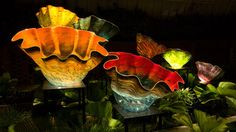 Macchia – my favorite glass series by Dale Chihuly