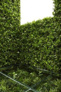 HOUSE VISION 2013   gokujo no heya  // Naruse-Inokuma Architects, Makoto Azuma, TOTO & YPP AP