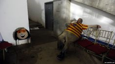February 7, 2014. The man who works as the mascot Margarito for the 2014 Caribbean baseball series rests backstage during a game in Porlamar City, Venezuela.