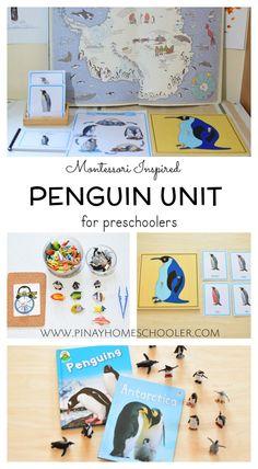 Penguin Unit for preschoolers