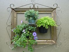 Frame A Plant 3d Plant picture...framed I was going to throw this away but I hate to throw things away so this is what happened.