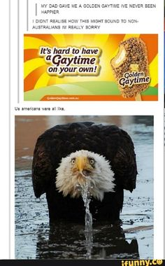 """21 'Murican Memes & Posts That *Anyone* Can Laugh At - Funny memes that """"GET IT"""" and want you to too. Get the latest funniest memes and keep up what is going on in the meme-o-sphere. Ft Tumblr, Tumblr Funny, Funny Memes, Funny Captions, Funny Cute, The Funny, Hilarious, Funny Pins, Just For Laughs"""