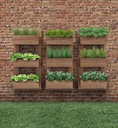 Fabulous DIY Vertical Garden Design Ideas Do you have a blank wall? the best way to that is to create a vertical garden wall inside your home. A vertical garden wall, also called a… Continue Reading → Vertical Garden Design, Herb Garden Design, Diy Garden, Vertical Planter, Garden Bed, Garden Wall Designs, Garden Walls, Planting Vegetables, Growing Vegetables