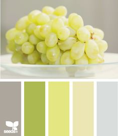 edible brights - love the pale limey green and soft grey