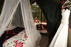 Eco-friendly, self-catering tree houses provide a secluded, romantic honeymoon destination or a haven for nature lovers.