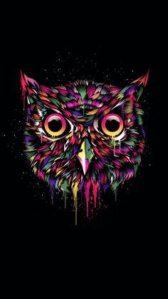 Wallpaper Iphone Owl Ten Thoughts You Have As Wallpaper Iphone Owl Approaches Owl Wallpaper Iphone, Cute Owls Wallpaper, Tier Wallpaper, Crazy Wallpaper, Tumblr Wallpaper, Animal Wallpaper, Colorful Wallpaper, Black Wallpaper, Iphone Wallpapers