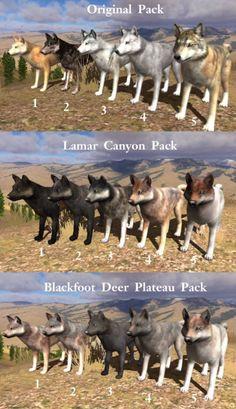 26 Best Wolfquest images in 2016 | Wild wolf, Wolf