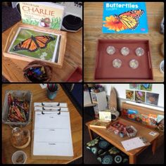 Inquiring Minds: Mrs. Myers' Kindergarten: Caterpillars, Worms, Poetry and Space: So Much To Explore!