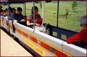 Visit Staunton's Gypsy Hill Park for a ride on the Gypsy Express Mini Train!  http://www.staunton.va.us/community/gypsy-express