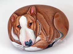 bull terrier hand painted on rock