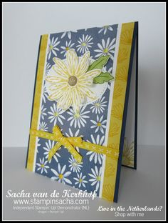 """daffodil delight 1/4"""" double-stitched ribbon"""