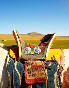 Adventures in Mongolia
