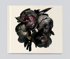 Album Cover for Massive attack, Art Direction Tom Hingston Studio, Photography by Nick Knight
