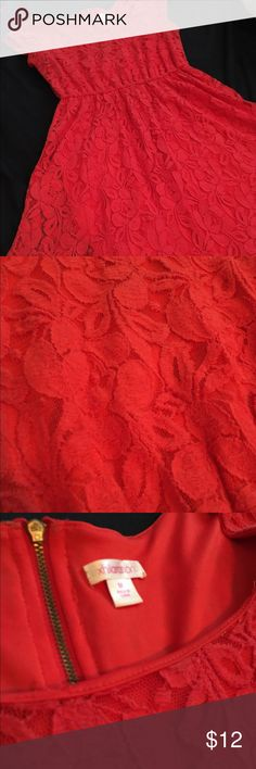 Red lace dress Red lace skater dress. Gold visible zipper in back. Fits true to size. Very comfortable. Worn a few times for work. Xhilaration Dresses