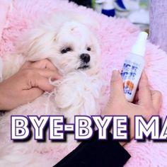 Bye Bye Mats