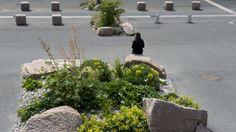 Réalisations et aménagement, dplg | Agence Laure Planchais Laura Lee, Green Corridor, Landscaping Plants, Parking Lot, Landscape Architecture, Quelque Chose, Nature, Design, Gardens