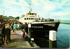 friesland 1