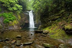 Courthouse Falls- Pisgah National Forest is home to numerous beautiful waterfalls and has miles of hiking trails to explore. If you are coming to North Carolina to visit waterfalls for the 1st time, this would be an excellent area to start in.