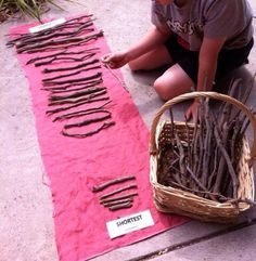 Longest to shortest - images from Golden Square Kindergarten ≈≈ LOOSE PARTS! Maths Eyfs, Numeracy Activities, Montessori Activities, Kindergarten Activities, Preschool Games, Math Games, Early Years Maths, Early Math, Early Learning