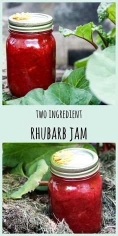 This simple, fresh and delicious Rhubarb Jam recipe has just two ingredients: rhubarb and sugar. No pectin needed! Jelly Recipes, Fruit Recipes, Gourmet Recipes, Healthy Recipes, Roast Recipes, Oven Recipes, Healthy Nutrition, Drink Recipes, Cooker Recipes