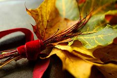 collecting fall - another view, via Flickr.