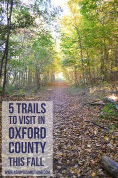 5 Trails in Oxford County to Visit This Fall - Ontario - A Simple Something #hike #trail#ontario #getoutside