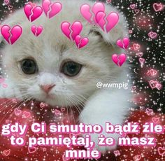 Cute Sentences, Sweet Memes, Cute Love Memes, Cute Messages, Cute Texts, Sweet Pic, Cute Cats And Dogs, Pick Up Lines, Kawaii