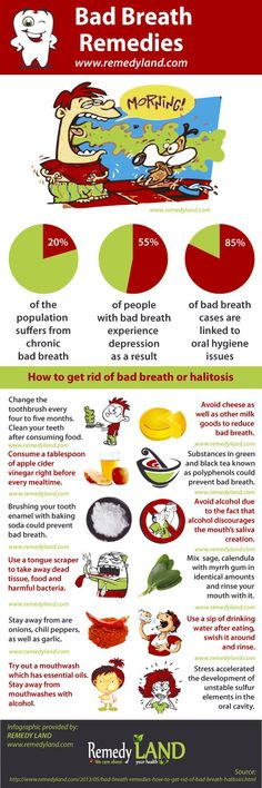 Important facts about bad breath or halitosis such as causes of bad breath, bad breath remedies and how to get rid of bad breath. Thanks, Remedyland.com, for a great visual.