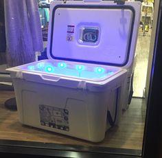 Lit cooler with lights
