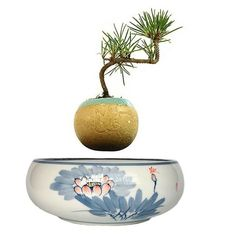 Type: Pots,VaseCeramic Type: PotteryFinishing: Not CoatedMaterial: CeramicUsed With: Flower/Green PlantModel Number: PastoralUsage Condition: Desktop Floating Plants, Potted Plants, Plant Pots, Home Decor Items, Bonsai, Decorative Bowls, Green, Flowers, Gifts
