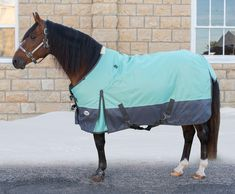 Comfort Cover Medium Turnout Fashion Horse Blanket Mint/Charcoal - Item # 42746