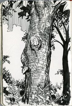 35 New Ideas For Landscape Drawing Tutorial Pen And Ink Landscape Drawing Tutorial, Landscape Sketch, Landscape Drawings, Watercolor Landscape, Landscape Paintings, Landscapes, Ink Pen Drawings, Realistic Drawings, Tree Sketches