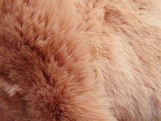 @Federico ALBARELLO © CUIRAPARIS Sept13 Pink, Pink Hair, Roses