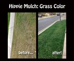 Avoid Drought Shaming! Hippie Mulch Grass Color is a simple, do-it-yourself product to get your grass green, instantly!  Hippie Mulch Grass Color is: ◦Non-toxic ◦Water-based ◦Organic ◦Containing no PAM (polyacrylamides)