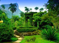 the-world-s-most-beautiful-botanical-gardens-cond-nast-traveler-53da72cb6dec627b149eafd4-rio-de-janeiro-brazil-south-america-alamy.jpg (961×705)