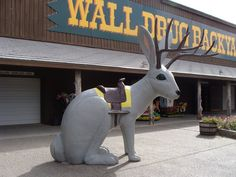 Wall Drug, South Dakota. The granddaddy of all Roadside Attractions, built on ice water and jackalopes!