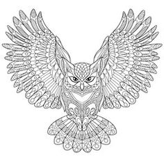Zentangle Stylized Cartoon Eagle Owl Isolated On White Background Hand Drawn Sketch For Adult
