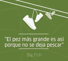 http://compartirvideos.es El gran pez #compartirvideos #imagenesdivertidas