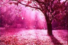 Pink my World Please and Thank you! :)