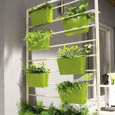 Plantes et design végétal par Castorama