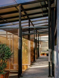 Mesh panels flank either side of the sections to allow air to flow thought and slide open up to allow for different configurations inside. Polycarbonate Panels, Building Facade, Large Plants, Open Up, Entry Doors, Danish Design, Santa Monica, Indoor Garden, Steel Frame