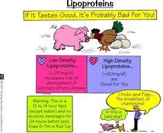 Lipoproteins, CJ Miller