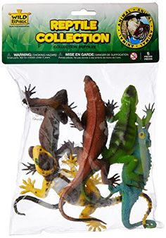 Awesome Stocking Stuffers for 4 Year Old Boys (small toys for boys) Reptiles, Big Iguana, Hamster Cages, 4 Year Old Boy, Walking Horse, Technology Humor, Best Stocking Stuffers, Operation Christmas Child, Animal Photography