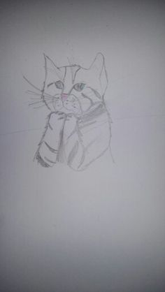 """Kitten """"praying"""" . I had an exam today, my voice was shaking so much! Repin with credit. Drawn by Echo Bravo."""