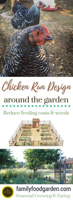 Backyard Chicken Runs and Designs around the Garden - DIY Garten Landschaftsbau